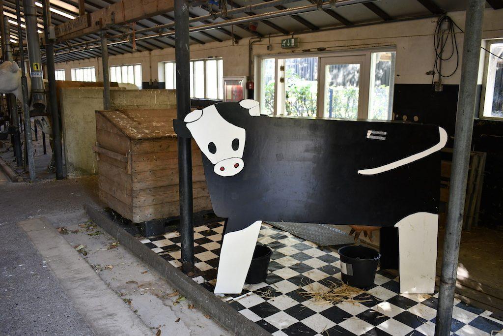 Zorgvrij, Houten koe, Velsen City Blog