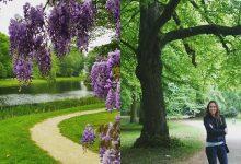 Landgoed Duin en Kruidberg Velsen City Blog